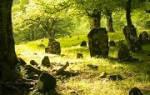 Сонник видеть кладбище во сне