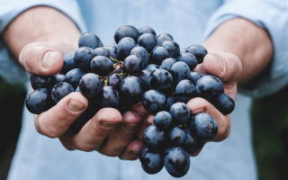 Виноград во сне что означает